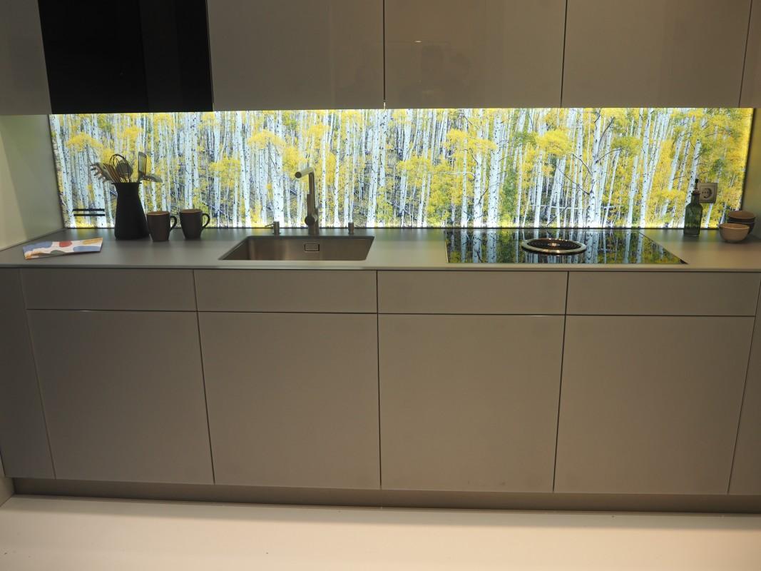 14-Besuch-Lieferanten-GlasTrosch-Neuheit-Glasarbeitsplatte-BAU-Messe-Glas-Rampp-GmbH-Augsburg